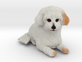 Custom Dog Figurine - Andy in Full Color Sandstone
