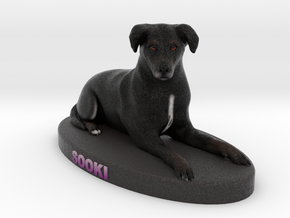 Custom Dog Figurine - Sooki in Full Color Sandstone
