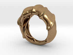 Leatherback Turtle Shell Ring  in Natural Brass: 5 / 49