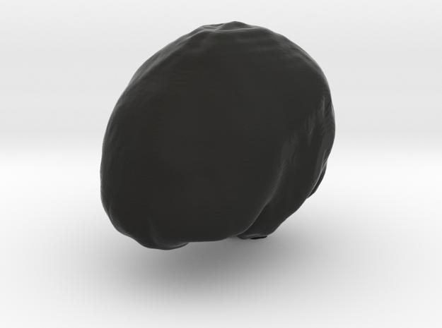 Moms Brain Surface Print in Black Natural Versatile Plastic