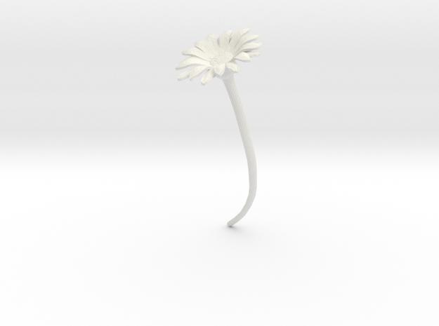 Daisy in White Natural Versatile Plastic