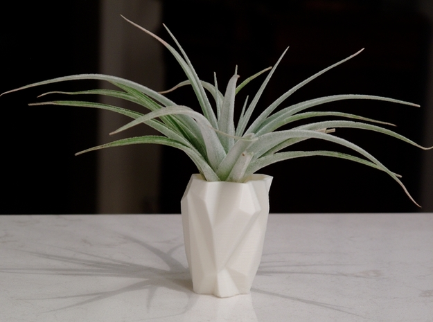 Ruba Rombic Vase for Air Plants in White Strong & Flexible