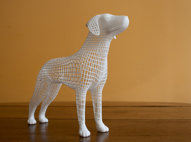 Wireframe dog in White Natural Versatile Plastic