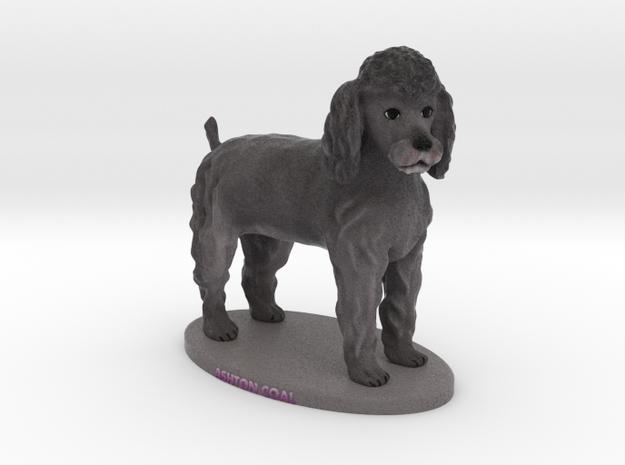 Custom Dog Figurine - Ashton Coal  in Full Color Sandstone