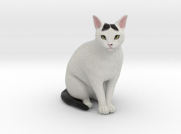 Custom Cat Figurine - Thistle in Full Color Sandstone
