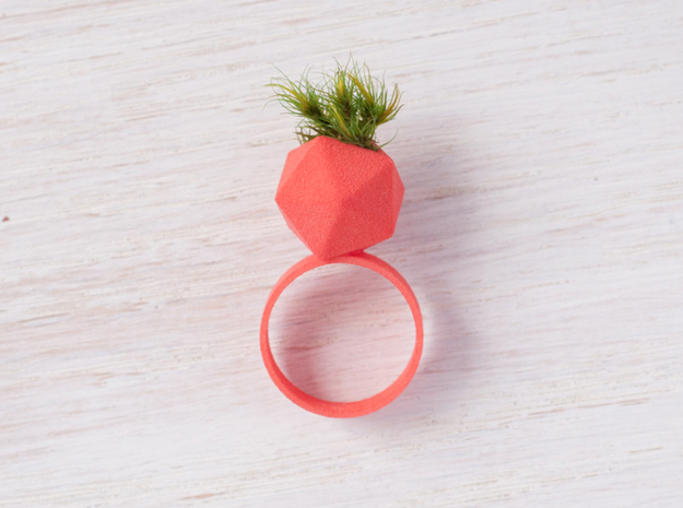 Icosahedron Planter Ring 3d printed With moss