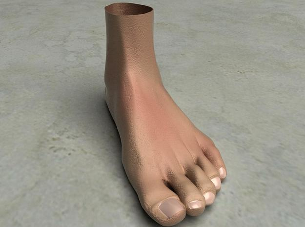 """Life Size Foot - 8.7""""- Hollow in White Natural Versatile Plastic"""
