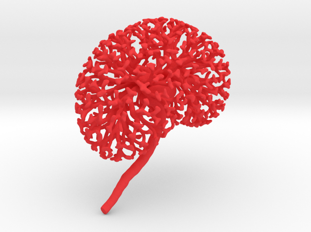 Medium Kidney Ureteric Tree (Mountable) in Red Strong & Flexible Polished