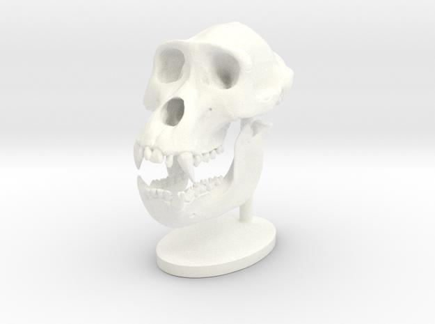 Gorilla Skull with base