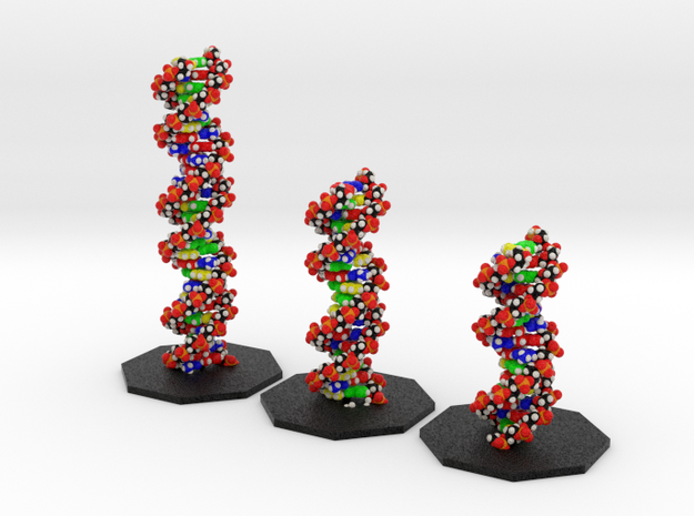 DNA Models Elizabeth, Sheryl and Emily in Full Color Sandstone