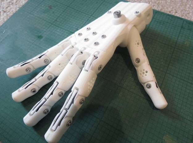 3D Printed Hand Right in White Natural Versatile Plastic