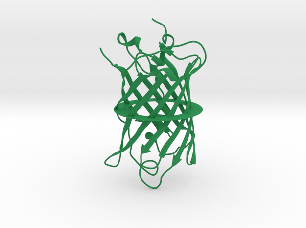GFP, XL (Green Fluorescent Protein), 1.5 mm wire 3d printed