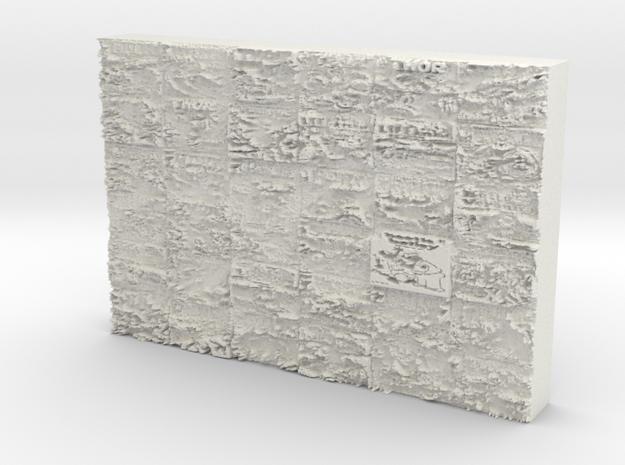 plateofdoom in White Natural Versatile Plastic