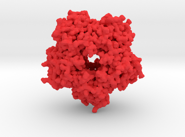 Encapsulated Ferritin in Red Strong & Flexible Polished