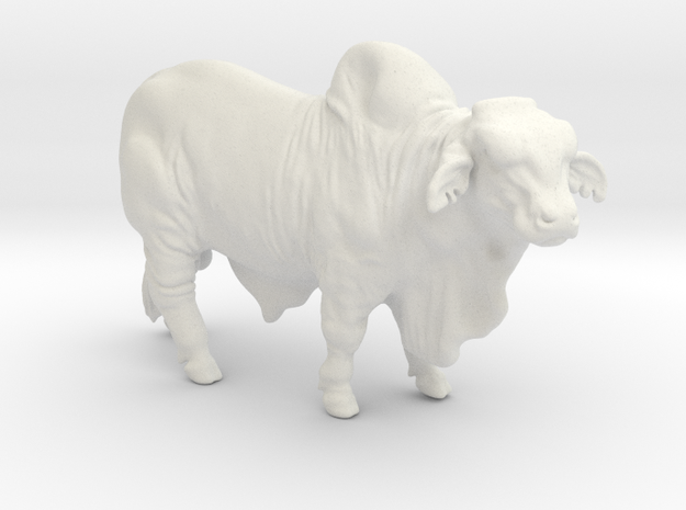 1/64 Brahma Bull in White Natural Versatile Plastic
