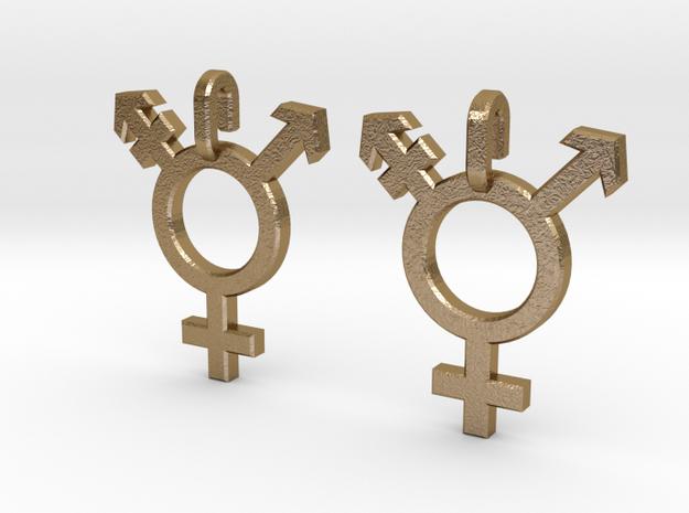 Transgender Earrings in Polished Gold Steel
