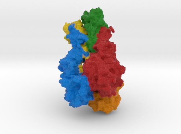 Hemagglutinin in Full Color Sandstone