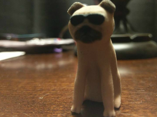 Cool Pug in Full Color Sandstone