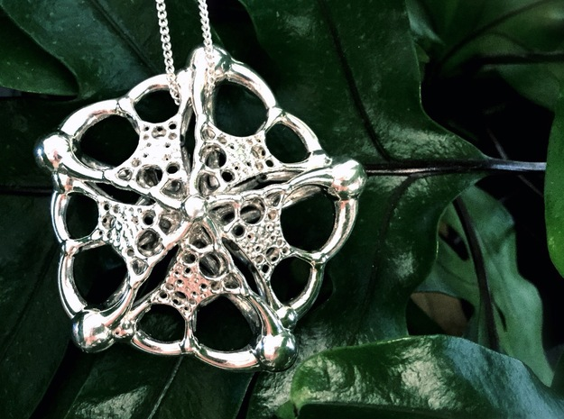 Monera 2 in Polished Silver
