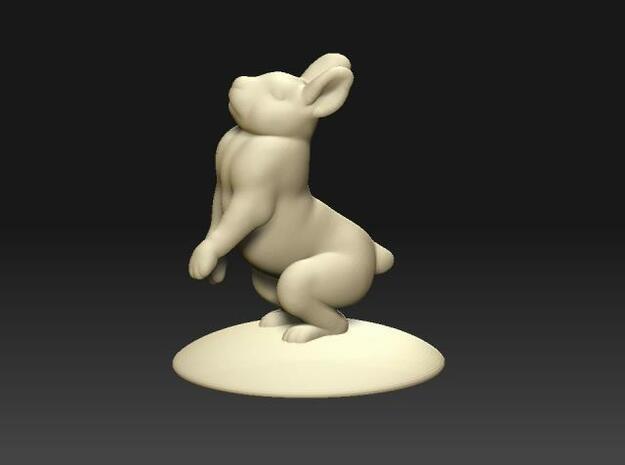 Small rabbit - 1 3d printed Description