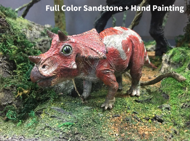 Triceratops Baby(Small/Medium-color size) in Full Color Sandstone: Medium