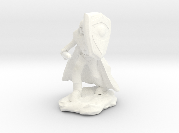 Human Paladin in Plate with Sword and Shield in White Processed Versatile Plastic