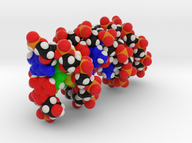 DNA in Full Color Sandstone: Small