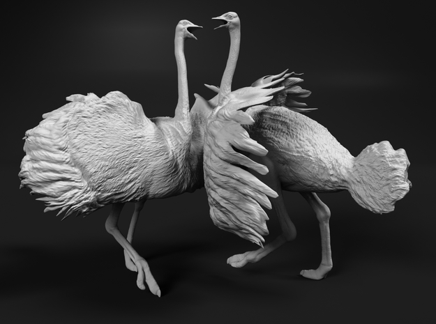 Ostrich 1:32 Fighting Pair in White Strong & Flexible