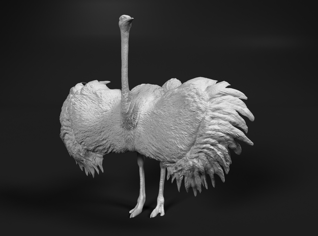 Ostrich 1:87 Wings Spread in Frosted Ultra Detail