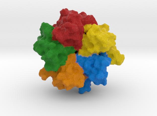 Nucleoplasmin in Full Color Sandstone