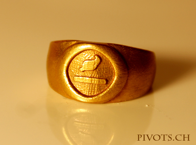 4 Elements - Earth Ring in Raw Bronze