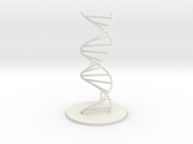 DNA Molecule Model Ladder. Sizes.