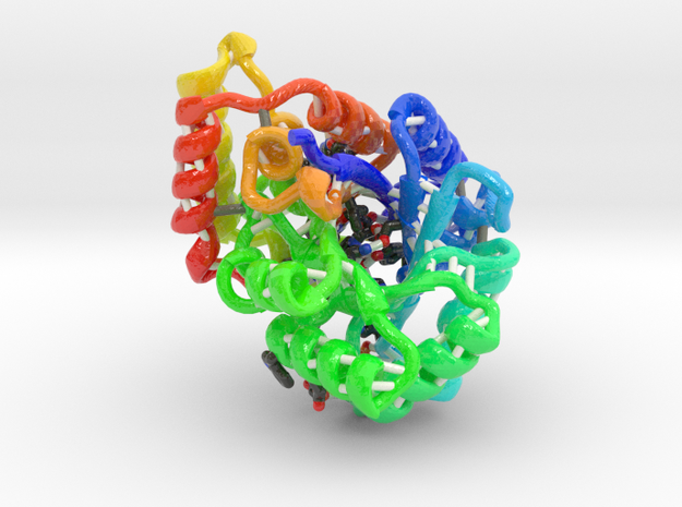 Succinic Semialdehyde Reductase in Glossy Full Color Sandstone