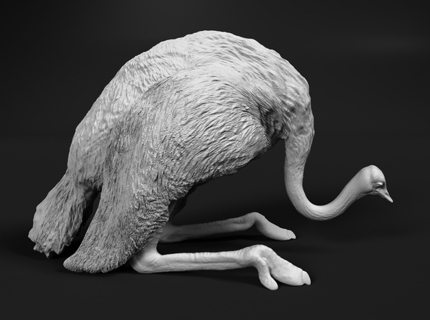 Ostrich 1:25 Guarding the Nest in White Strong & Flexible