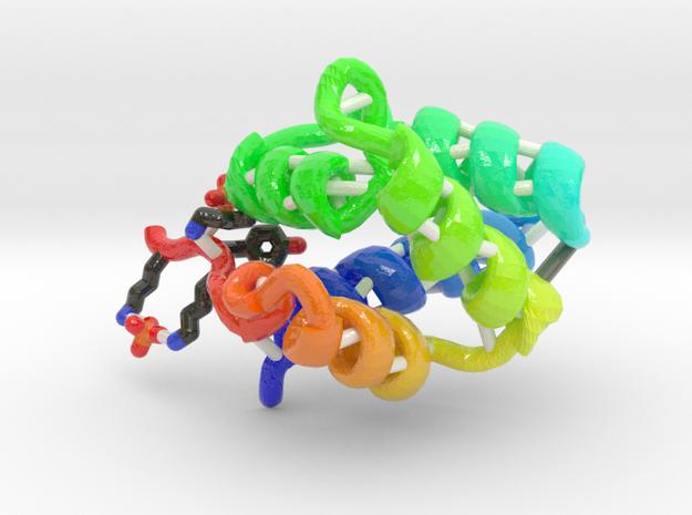 Dopamine Neurotrophic Factor in Glossy Full Color Sandstone