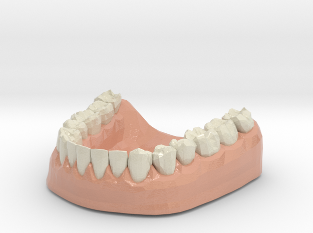 3D Teeth lower in Glossy Full Color Sandstone