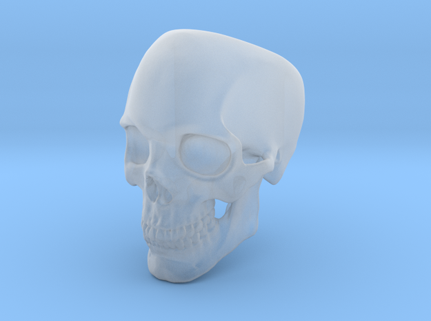 Human Skull Ring size 12