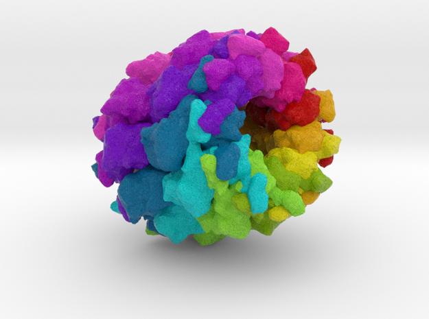 Rabies Virus in Full Color Sandstone