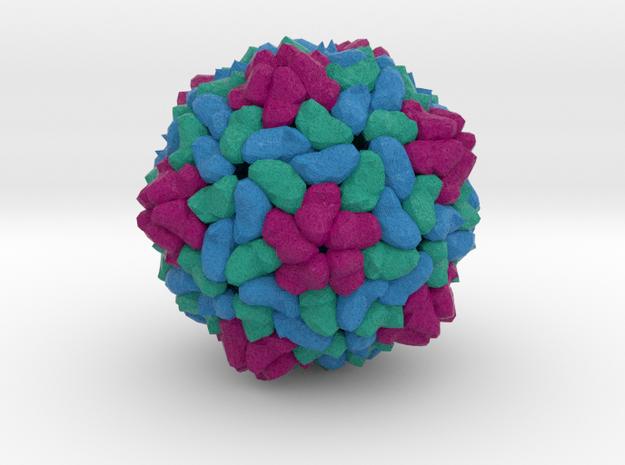 Betanodavirus in Full Color Sandstone