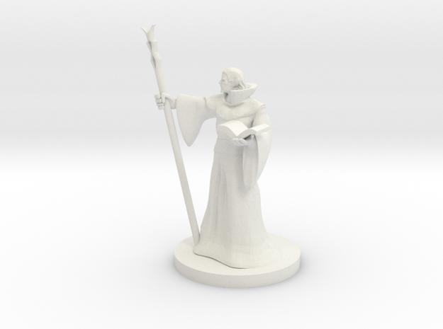Elf Staff Wizard