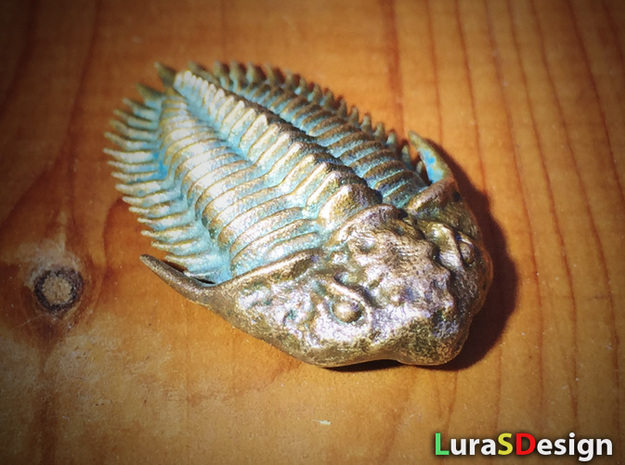 Trilobite Pendant in Natural Bronze