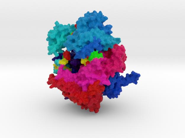 Cas13-crRNA Binary Complex in Full Color Sandstone