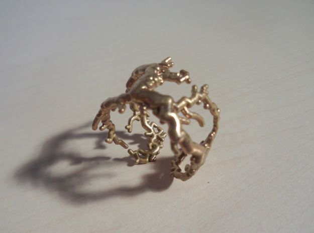 Root ring (US sizes 10 – 13) in Natural Bronze: 13 / 69