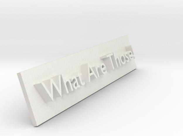 What are those meme plaque in White Natural Versatile Plastic