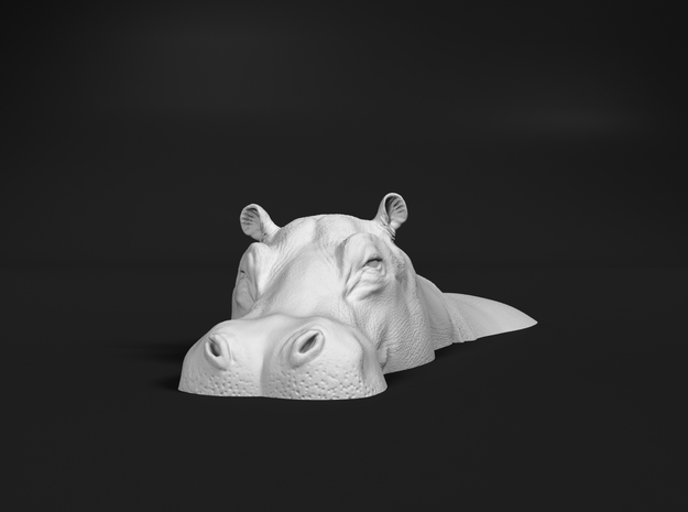 Hippopotamus 1:120 Lying in Water 1 in Smooth Fine Detail Plastic