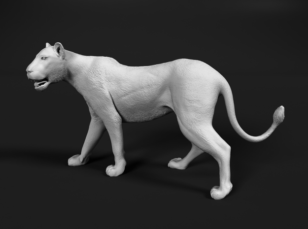 Lion 1:20 Walking Lioness 1 in White Natural Versatile Plastic