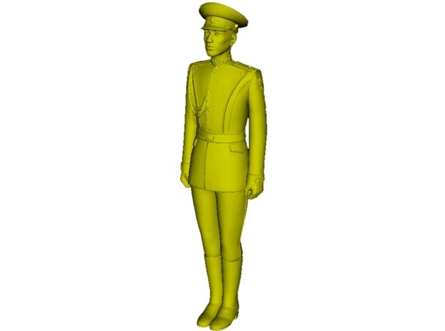 1/24 scale USSR & Russian Army honor guard soldier