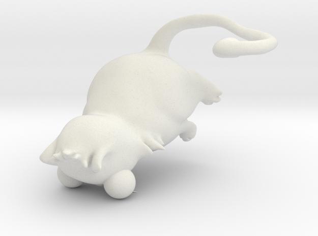cute cat in White Natural Versatile Plastic