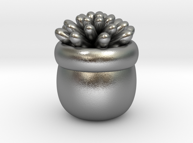 Succulent No.1 in Natural Silver