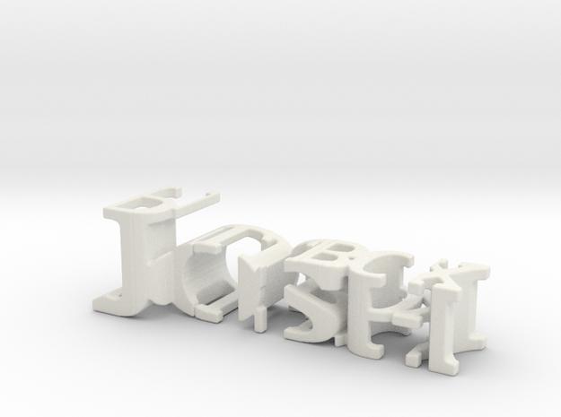 3dWordFlip: Josh/Pillbox in White Natural Versatile Plastic